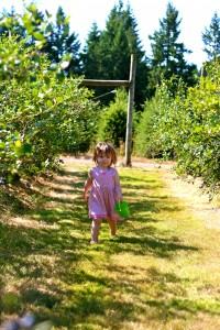 girl blueberry picking