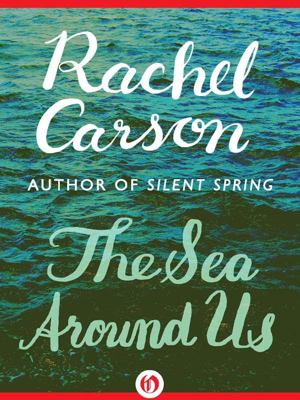 a biography of rachel carson an author of a book on pollution Author: lisa murdock  given the last 2 chapters in the book about rachel carson  the procedure for creating a 3-d collage using themes such as pollution,.