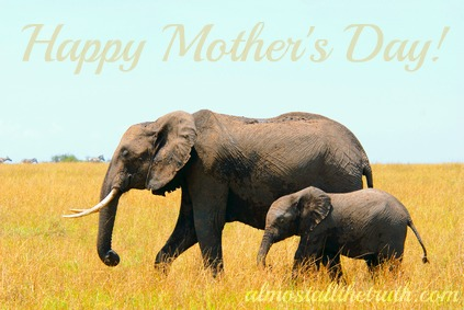 happy mothers day mother earth