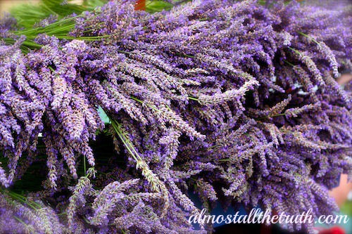 Almost All The Truth Lavender Herbal Ally