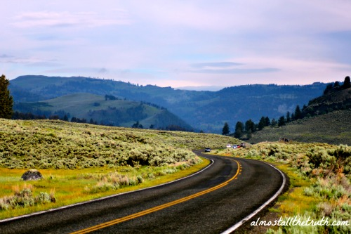 Almost All The Truth - Road into Lamar Valley