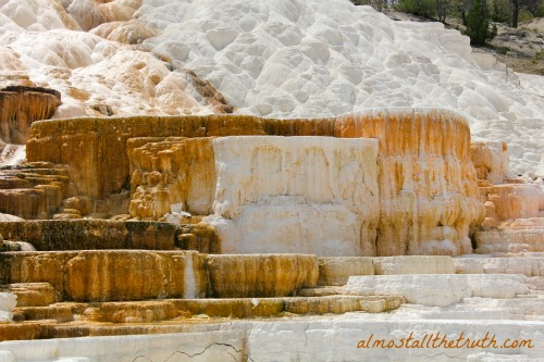 Almost All The Truth - Travertine Terraces