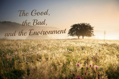 The Good, the Bad, and the Environment