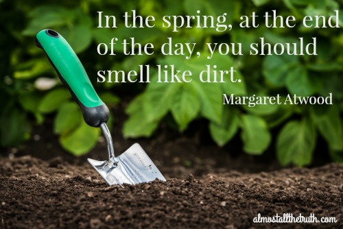 Almost All The Truth - Spring Dirt